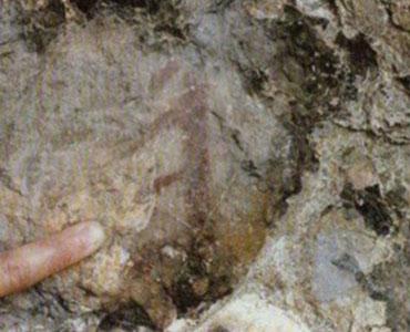 La Cova del Macià - Cogulló